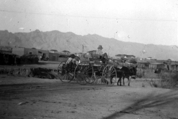 Freighter heading east over the Big Wash near what is now Stevens Avenue. The Catalina Mountains tower in the background and adobe houses appear at the rear of the wagon. In the distance, over the horse's head was the double roofs of the Presbyterian sponsored Tucson Indian Training School. To the far right is the University .