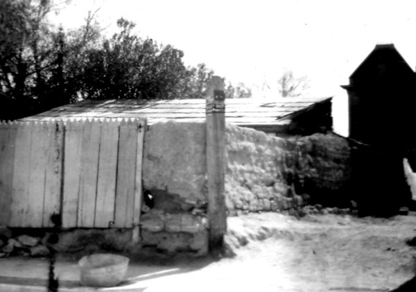 Tucson's Old Presidio wall in back of the County Court House.