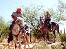 Forest Service rangers patrol the trails on horseback